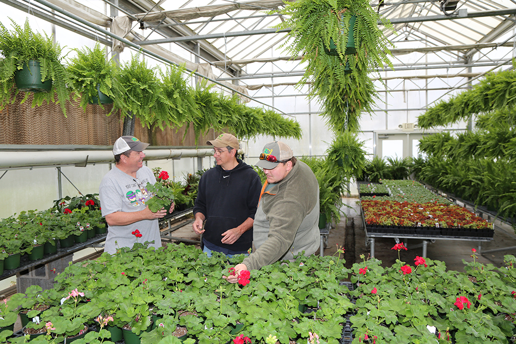 Mark King (left) a resident of Fish Creek, Nick Barton (center) a resident of Summerville, and Justin Womack of Silver Creek inspect the geraniums that will be on sale at GNTC's annual Spring Plant Sale, April 8-11.