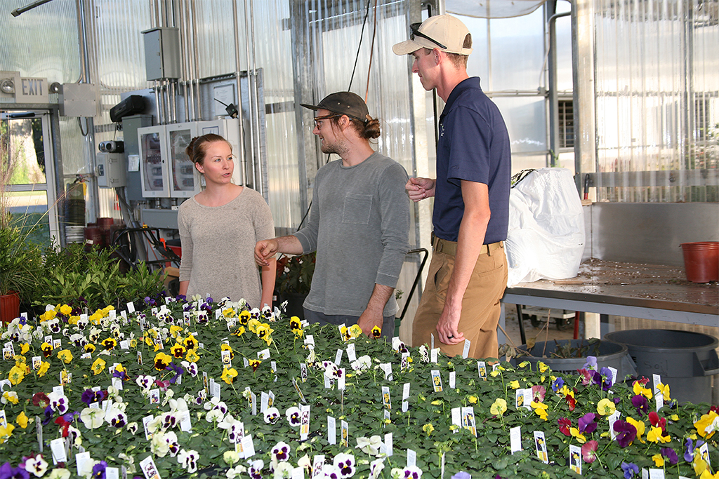 Rachel Braden of Plainville (left), Jeffrey King of Dalton (center), and Chase Bohannon of Calhoun (right) look over the pansies that will be available during GNTC's Fall Shrub and Pansy Sale. Braden is the owner of Bella Vita Mushrooms, King is a landscape architect for Davis Designs & Landscape, and Bohannon is the owner of East Line Landscaping.