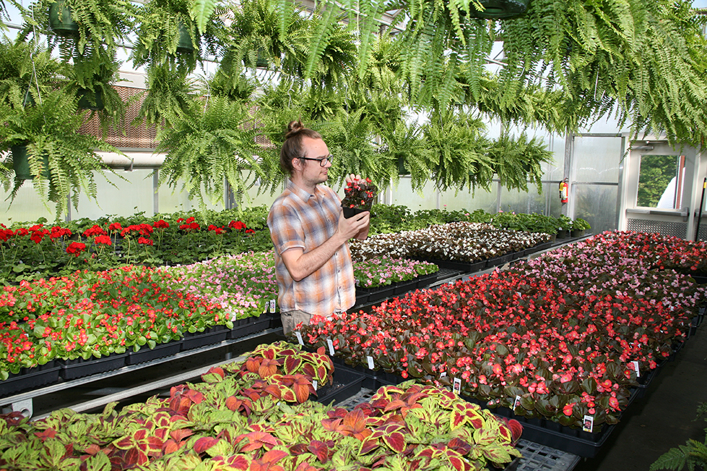 Jeffrey King of Rome of Rome inspects a plant that will be sold at GNTC's Spring Plant Sale April 18-21.