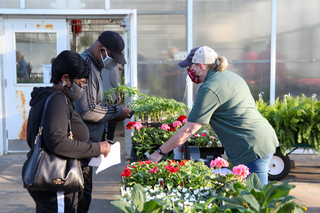 Alma and David Morgan (standing on the left) purchase flowers and vegetables from GNTC Horticulture student Amy Crawford (right) during GNTC's Spring Plant Sale on Tuesday, April 6.